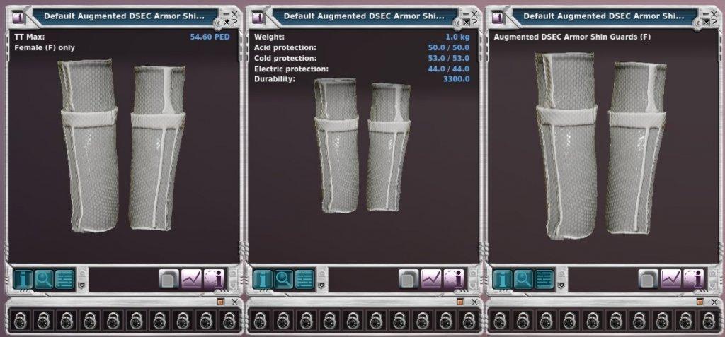 Augmented DSEC Armor Shin Guards (F).jpg