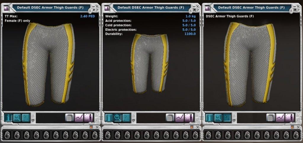 DSEC Armor Thigh Guards (F).jpg