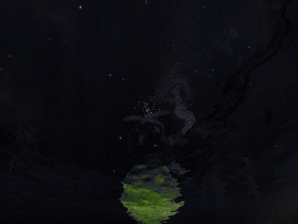 Wizard-12.jpg